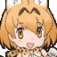 :serval5: